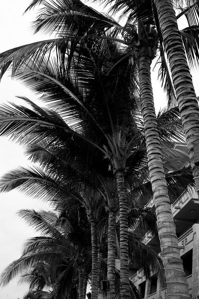 Mexico_2007_-58.jpg