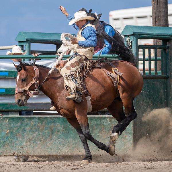 2019 Rodeo 2 (987 of 1380).jpg