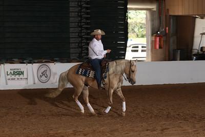 Saturday Novice Horse