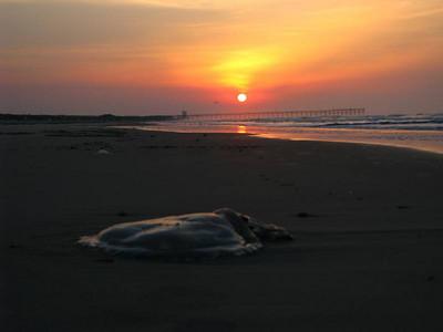 Sunset Beach surf fishing Sunrise  May 1 2011