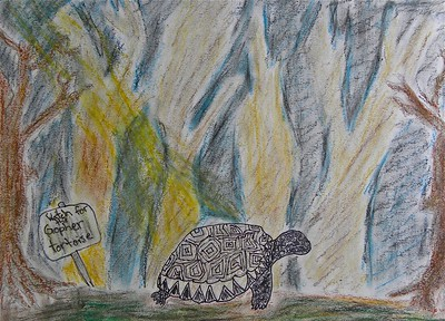 2013 Give Wildlife a Chance Poster Contest
