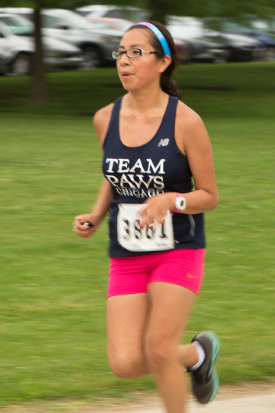 Team PAWS Runner 3861 (20140621-RfTL-542).jpg