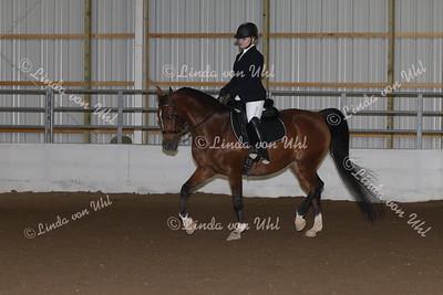 Class #140 Arabian Sport Horse Show Hack Open