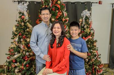 IRVS - Christmas