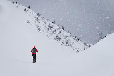 Lapland (Off Track)