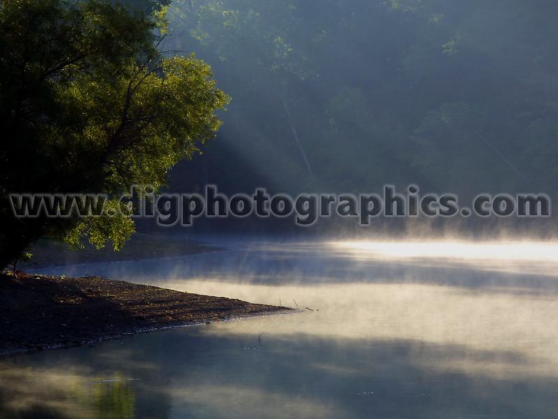 Mornin dew-10x8.jpg