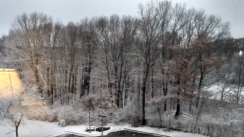 Winter Trip_2019-12-11_07-48-23_IMG_20191211_074823423_HDR.jpg
