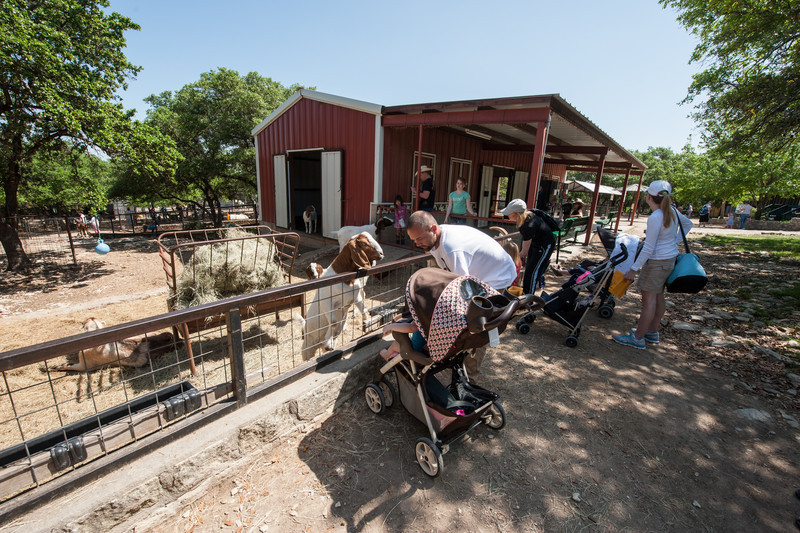 Austin_Zoo-5414.jpg