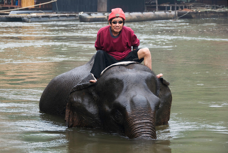 Elephant bath behind Jungle Rafts