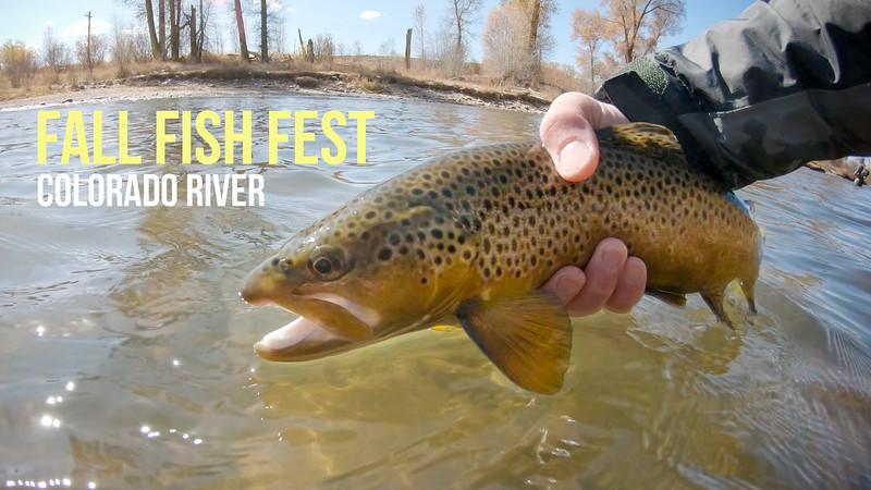 Fall Fish Fest Larger Thumb.jpg
