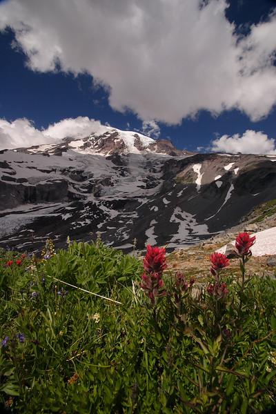 Mt. Rainier 50.JPG