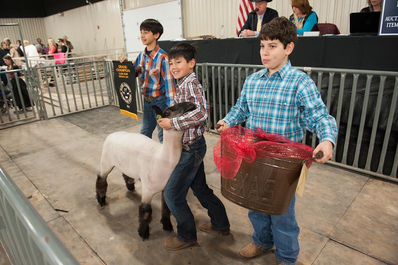 Hays County Show-9814.jpg