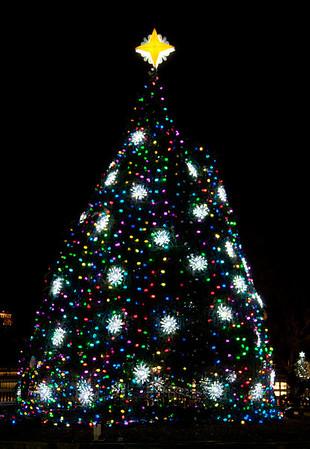 National Christmas Tree (2011)