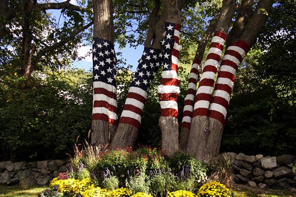 9/11 Memorial Spring