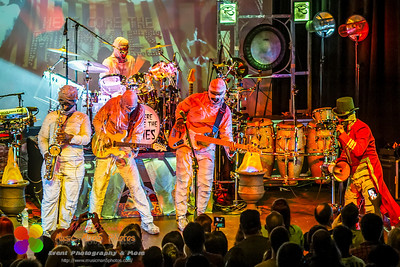 Here Come the Mummies 04/04/2013