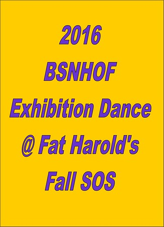 2016 BSNHOF Exhibition Fall SOS