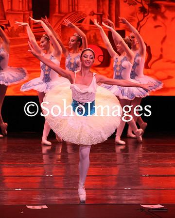 Elsa Pardo Dance Center