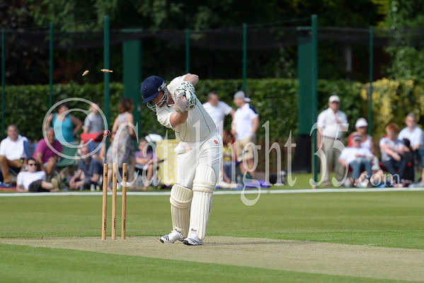 Reed's Celebrity Cricket Match & Community Day