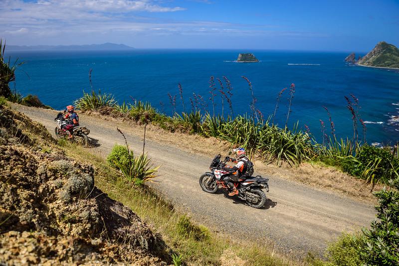 2018 KTM New Zealand Adventure Rallye - Northland (700).jpg