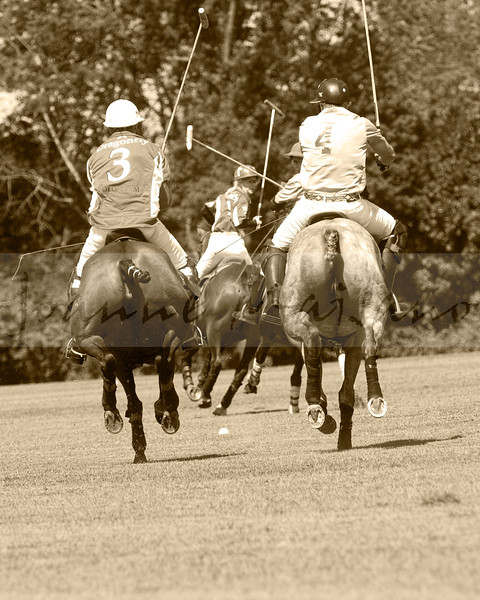 Middleburg Humane Piper Cup 7-30-17