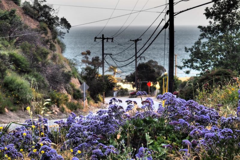 May 3 - Nature and man.jpg