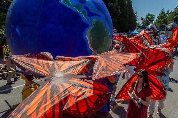 Set eight the Grand Parade, Vashon Island Strawberry Festival 2019