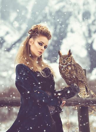 winter nomad owl
