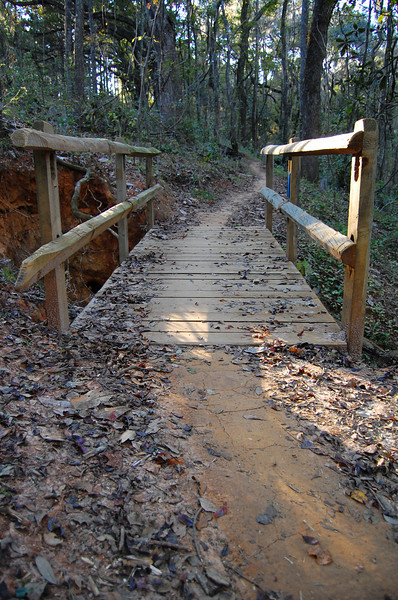 See this gallery for our construction of this bridge.