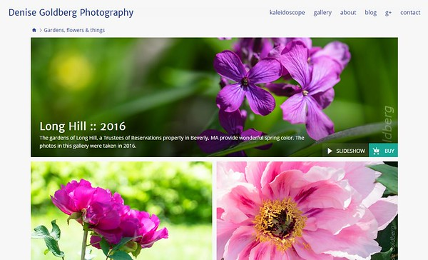 SmugMug new gallery header