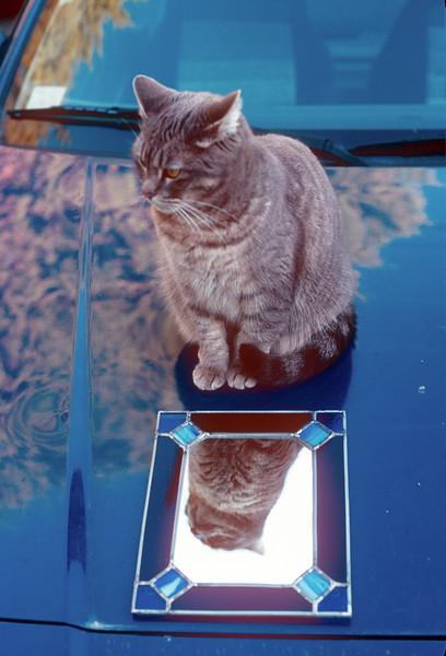 1989-04 Cassie.jpg