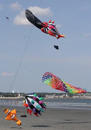 Kites on Lynn beach   9-4-17