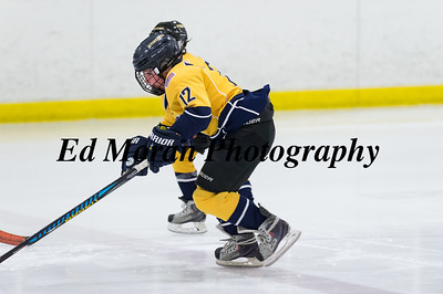 Providence Jr Friars Vs CT Riverhawks-2/18/17
