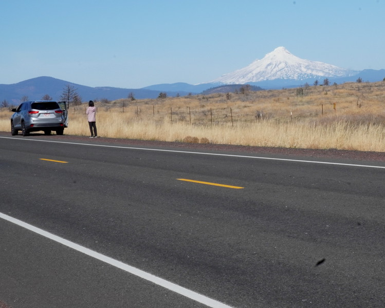 Road to Columbia River Gorge 2.JPG