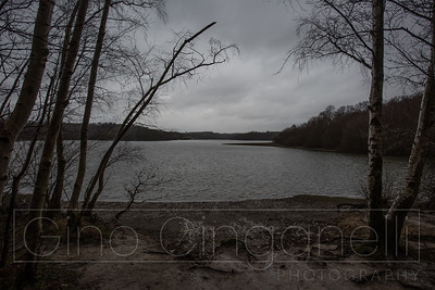Bewl Water on a winters day