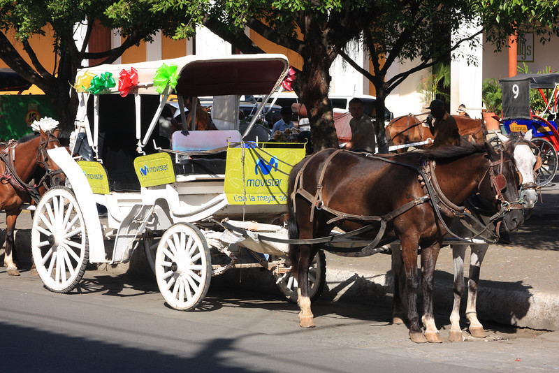 This horse and buggy ride sponsored by Movistar (cell phone company)