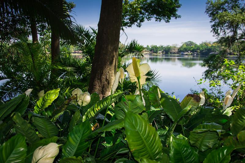 Orlando-168.jpg