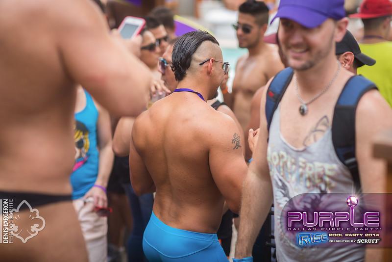 2014-05-10_purple03_184-3255165657-O.jpg