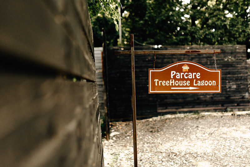 Nunta TreeHouse-3.jpg
