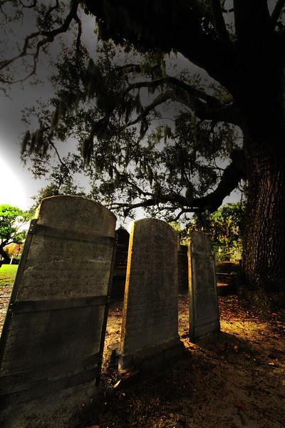 savannah church yard.jpg