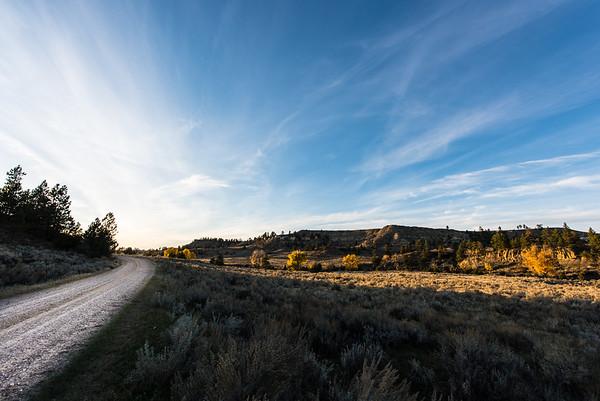 Borman Ranch - MLR