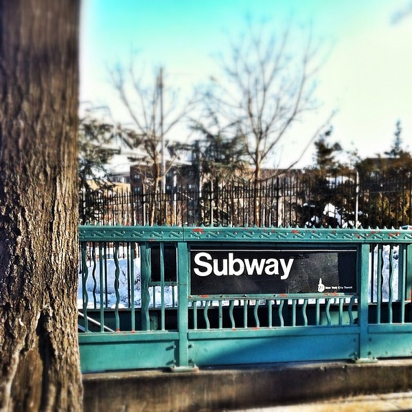 Trees and the #NYC #subway. Not sure I've ever seen the two together before. #streetphotography