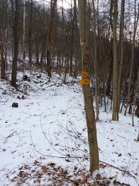 New start of the Minisink Trail at Route 6.