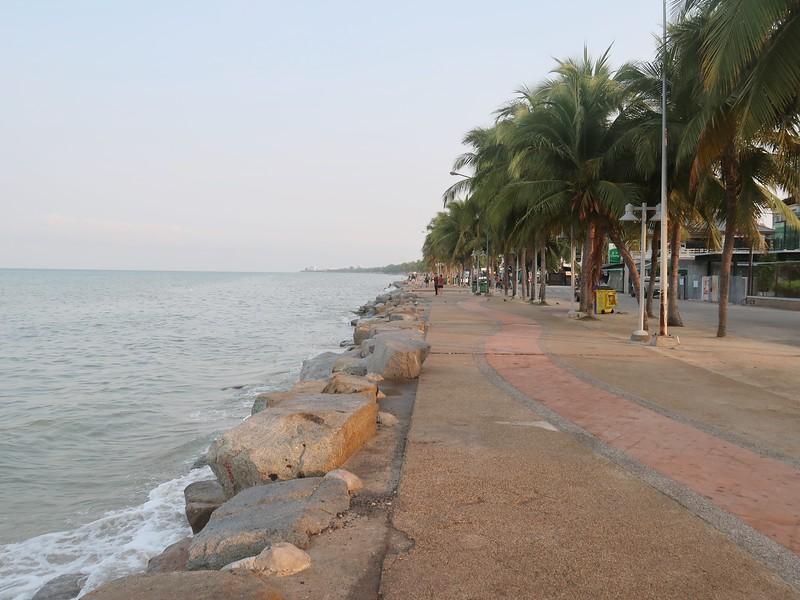 IMG_9329-morning-walk.jpg