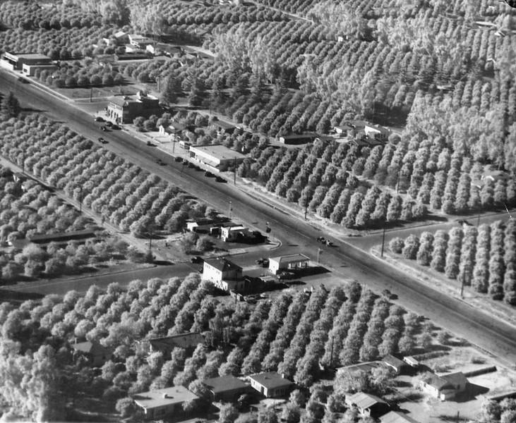 Anaheim-AerialViewCitrusGroves-1930.jpg