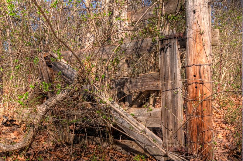 Old Wood Fence Greensfelder Park Series 1 hdr (all 7).jpg
