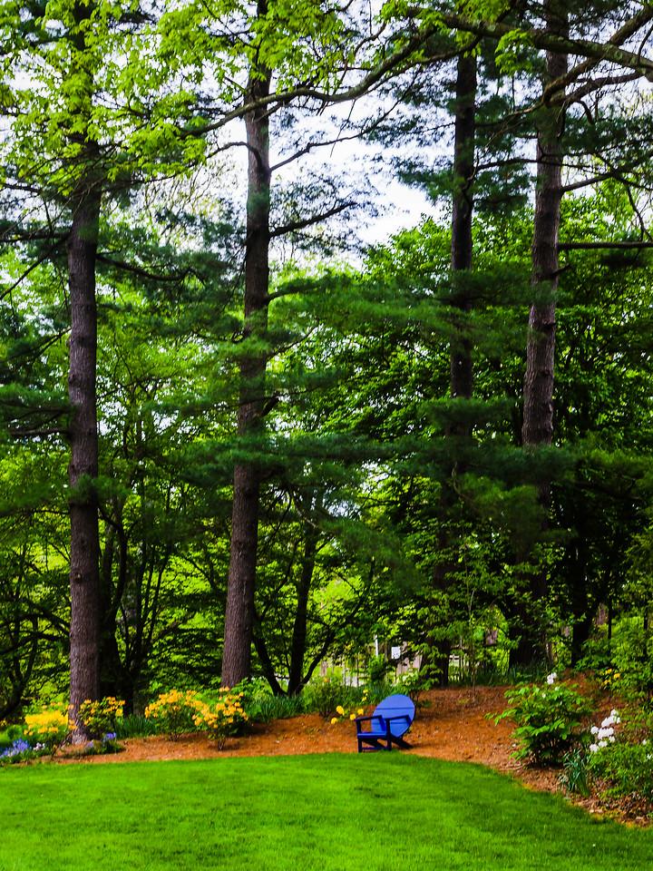 Chanticleer花园,幽静的树林