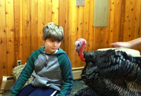 TurkeyTime-BR-112918 026