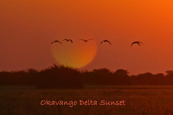 Botswana-Okavango Delta-Duba Plains Scenery