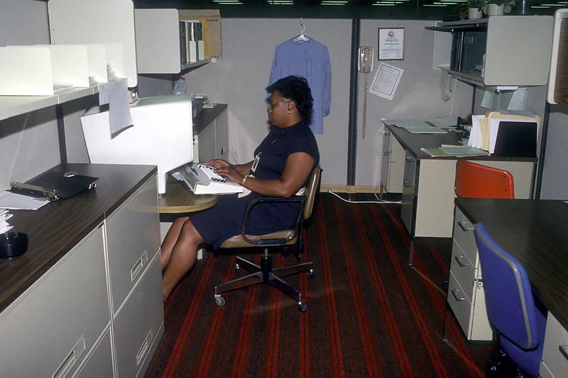 programmer August 1984.jpg