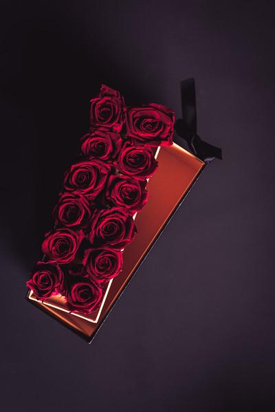 Rose Inspired (2nd Day)--3.jpg